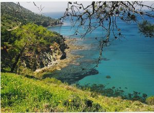 """AKAMAS"" -Peninsula National Park-"